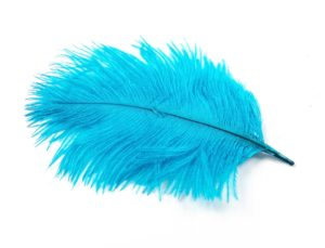 Turquoise Light - Ostrich Feather Wedding Confetti