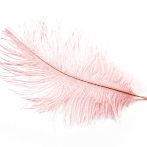 Baby Pink - Ostrich Feather Wedding Confetti