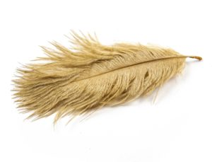 Old Gold - Ostrich Feather Wedding Confetti