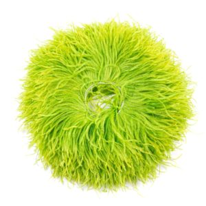Lime - Ostrich Feather Fringing