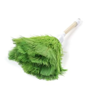 Lime - Ostrich Feather Toy Duster